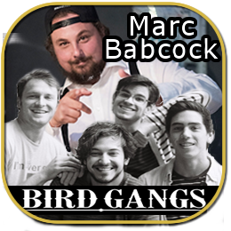 Marc Babcock and Birdgangs